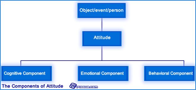Attitude Components