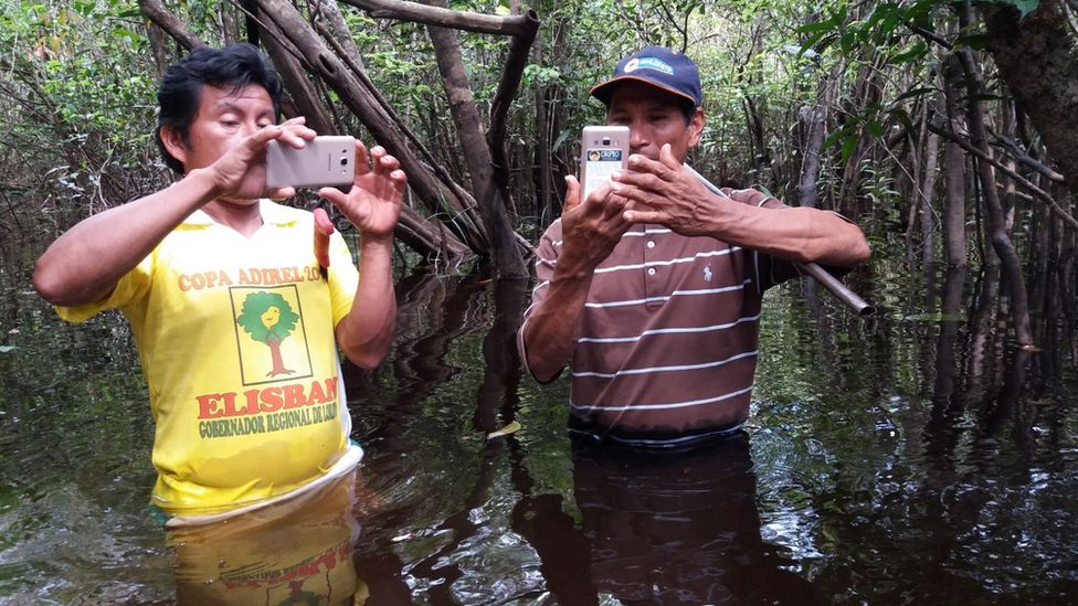 Climate Change: Technology Boosts Efforts To Curb Tree Loss In Amazon