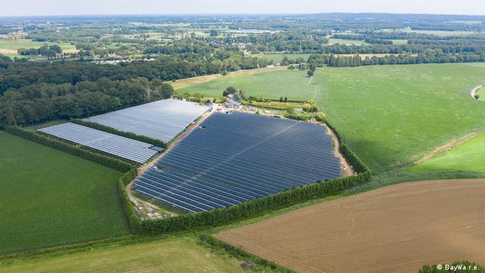 Some berry farmers in the Netherlands are swapping traditional roofs of plastic for solar panels